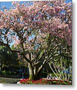 Tree With Pink Flowers Metal Print