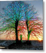 Trees Aglow Metal Print