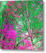 Trees Alive In Pink Metal Print