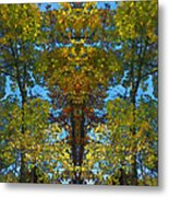 Trees Alive Metal Print by Susan Leggett