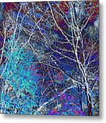 Trees Alive With Color Metal Print