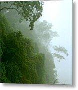 Trees Along The Boumba River Metal Print