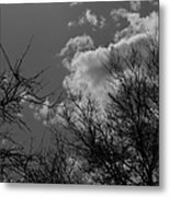 Trees And Clouds 3 Bw Metal Print