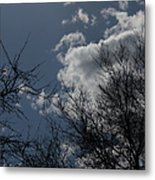 Trees And Clouds 3 Metal Print