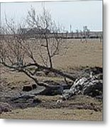 Trees And Early Spring Creek Metal Print