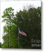 Trees And Flag Metal Print