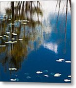 Trees And Sky In The Water Metal Print