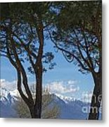 Trees And Snow-capped Mountain Metal Print