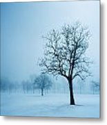Trees And Snow In Fog, Toronto, Ontario Metal Print