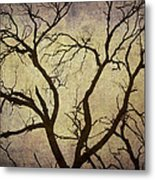 Trees Are The Lungs Of The World Metal Print