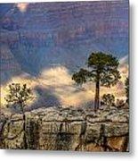 Trees At The Grand Canyon Metal Print