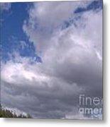 Trees Below The Clouds Metal Print