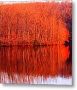 Trees By River Metal Print by Jose Lopez