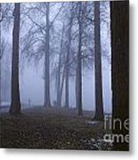 Trees Greenlake With Man Walking Metal Print