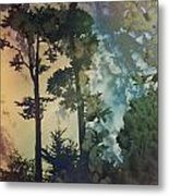 Trees In Golden Gate Park Metal Print