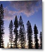 Trees In Silhouette Metal Print