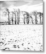 Trees In Snow Scotland Iv Metal Print
