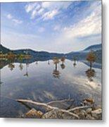 Trees In The Lake Metal Print