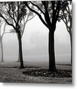 Trees In The Midst No. 06 Metal Print