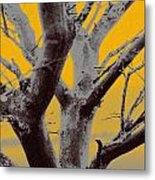 Winter Trees In Yellow Gray Mist 1 Metal Print
