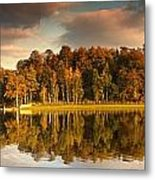 Trees Lining The Waters Edge Reflected Metal Print