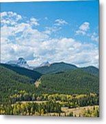 Trees On Canadian Rockies Along Route Metal Print