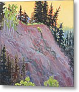 Trees On Top Metal Print by Susan McCullough