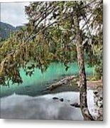 Trees Overhanging Cheakamus Lake Metal Print