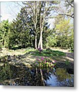 Trees Reflection In The Pond Metal Print