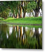 Trees Reflection On The Lake Metal Print