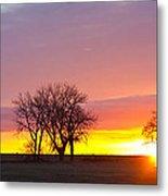 Trees Watching The Sunrise Panorama View Metal Print