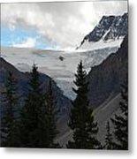 Treescape In Canada Metal Print