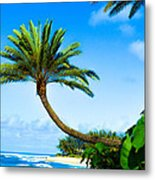 Treescape North Shore Metal Print