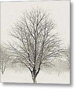Treeternity Metal Print