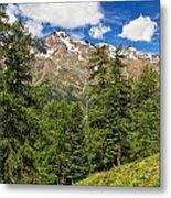 Trentino - Pejo Valley On Summer Metal Print