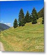 Trentino - Val Di Sole Metal Print