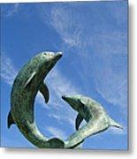 Tresco Dolphins Metal Print