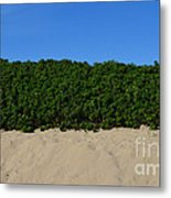 Tri-color At The Beach Metal Print