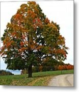 Tri-color Tree Metal Print