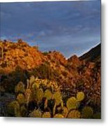 Trickle Of Light Metal Print