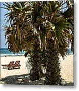 Trincomalee Palms Metal Print
