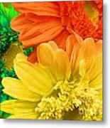 Trio Of Bright Colored Daisies Metal Print