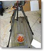 Tripod And Cherries On Floor Metal Print