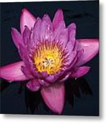 Tripple C - Color Changing Center... Metal Print
