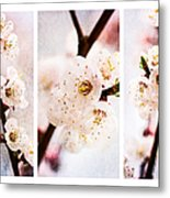 Triptych Light Of Spring 2 Metal Print