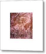 Triumph_09.23.12 Metal Print