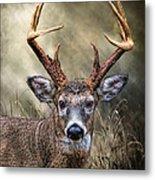 Trophy 10 Point Buck Metal Print