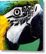 Tropical Bird - Colorful Macaw Metal Print
