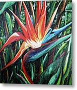Tropical Bird  Metal Print