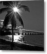 Tropical Bridge In Black And White Metal Print